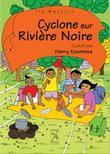 Cyclone sur Rivière Noire