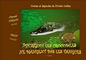 Pourquoi les crocodiles